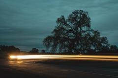 Сельские светлые следы стоковые фото