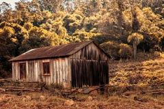 Сельский взгляд покинутого сарая стоковая фотография