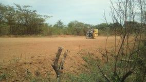 Сельский стоковые фотографии rf
