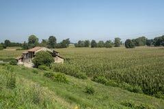 Сельский ландшафт вдоль пути цикла Po Стоковые Изображения RF