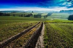 Сельский ландшафт дороги поля в Баварии, Германии Стоковые Фотографии RF