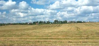 Сельский ландшафт лета с накошенным полем Стоковое Изображение