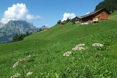 Сельский ландшафт на Engelberg Стоковое Изображение