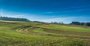 Сельский ландшафт с голубым небом Стоковое Изображение RF
