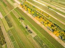 Сельский ландшафт, с дорогой через обрабатываемую землю, увиденную от взгляда глаза ` s птицы Деревья дорогой в цветах осени Стоковая Фотография RF