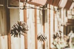 Сельский натюрморт конусов Внешнее оформление дома Стоковые Изображения RF