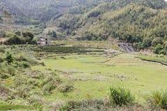 Сельский пейзаж графства Нанкина, самана rgb Стоковая Фотография