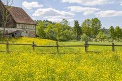 Сельский пейзаж с амбаром Стоковое Изображение RF