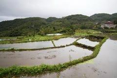 Сельский пейзаж Стоковое Изображение
