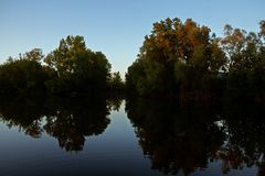 Сельский пруд в вечере Стоковые Изображения RF