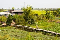 сельское деревенское к дорожке села Стоковые Фото
