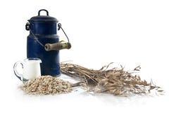 сельское завтрака здоровое Стоковая Фотография