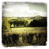 Сельское место Стоковые Изображения
