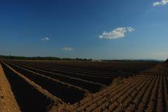 Сельскохозяйственне угодье и голубое небо Стоковая Фотография RF