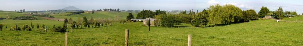 сельскохозяйственне угодье Новая Зеландия Стоковые Изображения RF