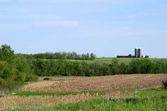 сельскохозяйственне угодье Стоковое фото RF