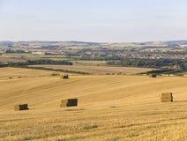 сельскохозяйственне угодье dorchester dorset Англии Стоковое Изображение