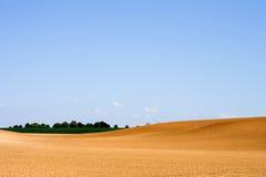 сельскохозяйственное угодье 4 Стоковая Фотография RF