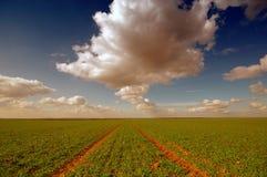 сельскохозяйственное угодье yorkshire Стоковые Фотографии RF