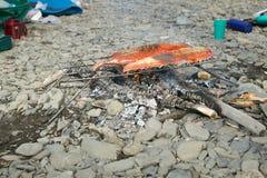 Семга fillets приготовление на гриле на горячих углях лагерного костера Стоковое фото RF