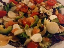 Семги и моццарелла авокадоа салата стоковые фотографии rf