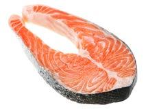 семги рыб красные Стоковое фото RF