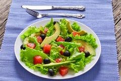 Семги, свежие листья салата, авокадо и салат оливок Стоковая Фотография RF