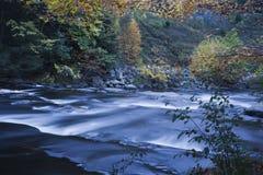 семги Fall River Стоковые Изображения RF