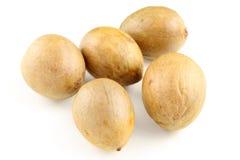 Семена авокадоа изолированные на белой предпосылке Стоковое Изображение