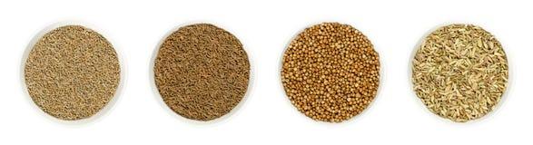 Семена анисовки, тмина, кориандра и фенхеля в шарах над белизной стоковое фото