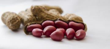 семена арахиса крупного плана Стоковое Фото