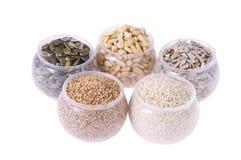 семена баков стоковые изображения