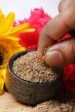 Семена биллиарда Стоковые Изображения RF