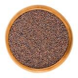 Семена брокколи в деревянном шаре над белизной Стоковое Изображение
