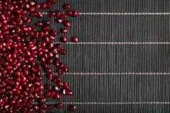 Семена венисы Стоковое фото RF