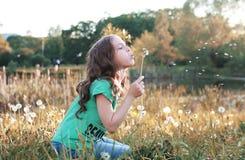 Семена девушки дуя от одуванчика цветка в осени Стоковое фото RF