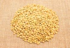 Семена зеленых чечевиц на холсте Стоковая Фотография RF