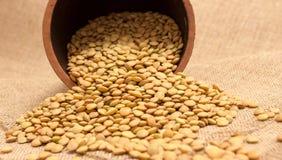 Семена зеленых чечевиц на холсте Стоковые Изображения