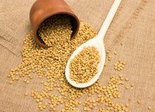 Семена зеленых чечевиц на холсте Стоковое фото RF
