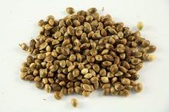 Семена 3 конопли стоковые фотографии rf
