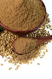 Семена кориандра, свежий кориандр и напудренный кориандр стоковые изображения