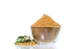 Семена кориандра, свежий кориандр и напудренный кориандр стоковая фотография