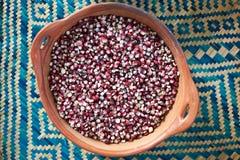 Семена красной темной мозоли сухие Стоковые Фотографии RF