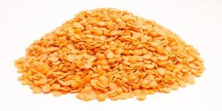 Семена красных чечевиц на белой предпосылке Стоковые Изображения