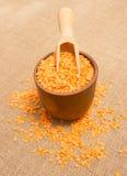 Семена красных чечевиц на холсте Стоковое Фото