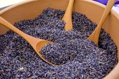 семена лаванды Стоковая Фотография