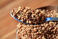семена макроса fenugreek стоковое фото rf