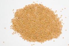 семена мустарда предпосылки светлые Стоковые Изображения