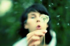 Семена одуванчика девушки дуя отсутствующие стоковая фотография rf