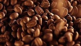 Семена падения кофе близкий кофе вверх макрос кофе завтрака фасолей идеально изолированный над белизной макрос кофе завтрака фасо акции видеоматериалы